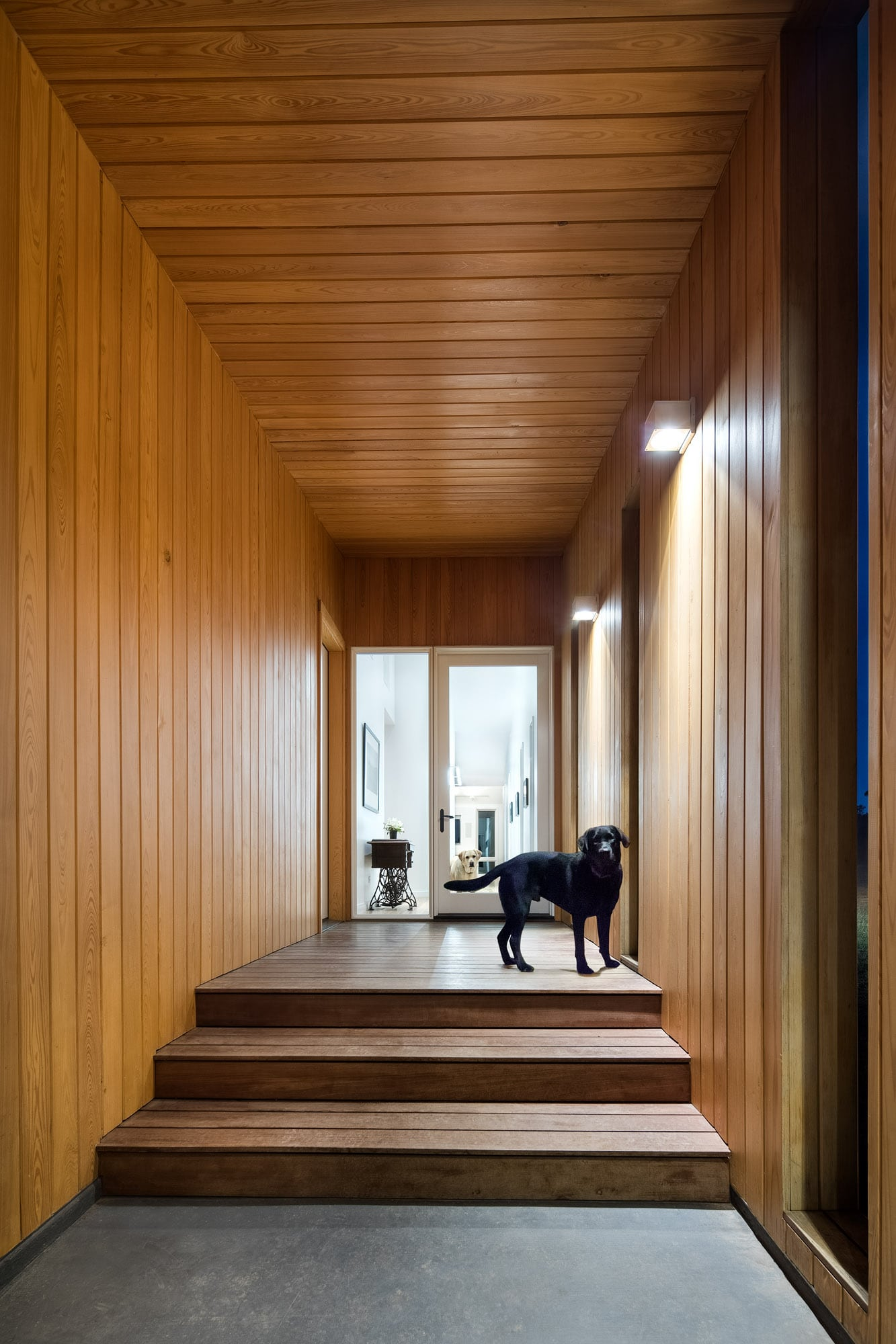 wood feature hallway and entry in the Self-sustaining home in Wimberley Texas