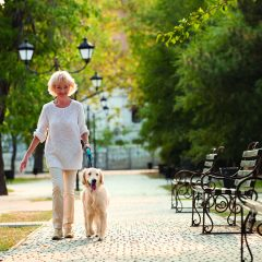 3 Ways Pups Can Improve Seniors' Health