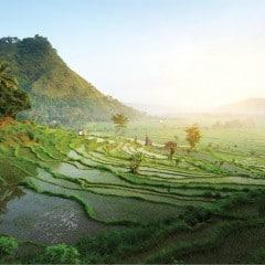 Magical Upcountry Bali