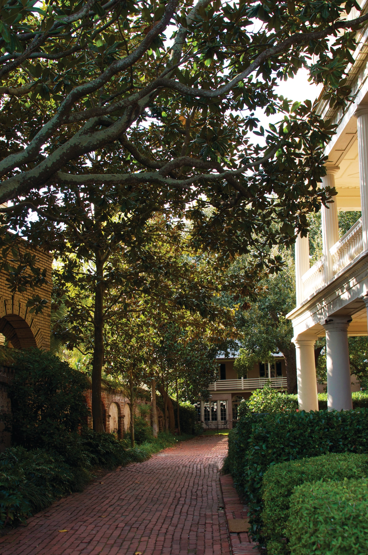 Discovering Charleston - Living Magazine
