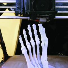 Printing Bodies
