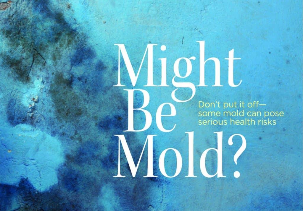 9-16 Home_Mold_web1