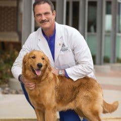 Arlington Orthopedic Associates, P.A. – Dr. Frank Rodriguez