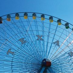 The State Fair Saga