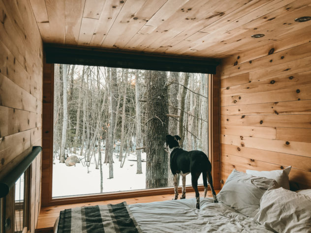 tiny cabin vacation retreat in the woods